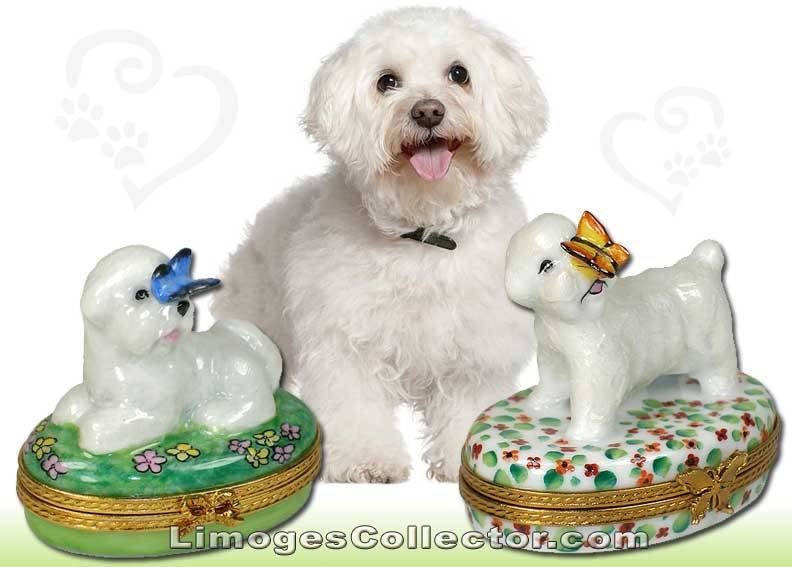 Bichon Frise Limoges boxes by Beauchamp | LimogesCollector.com