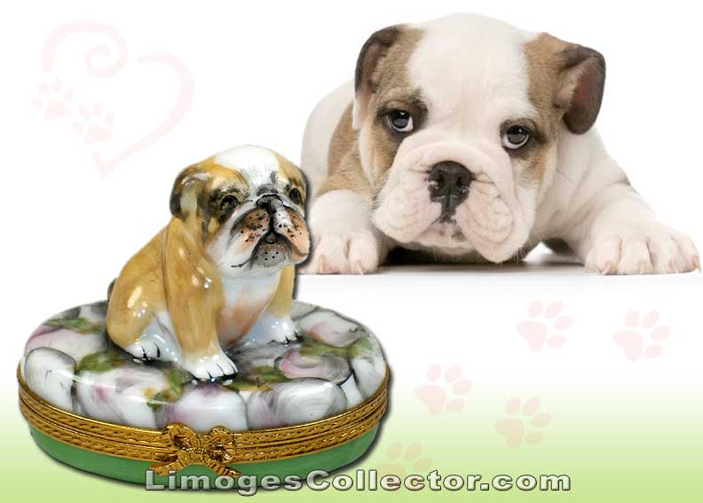 Bulldog Limoges box by Beauchamp Limoges | LimogesCollector.com
