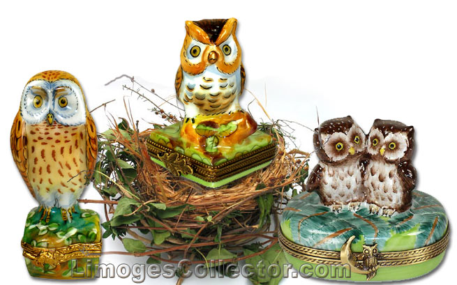 Grouping of Owl Limoges Boxes | Limogescollector.com